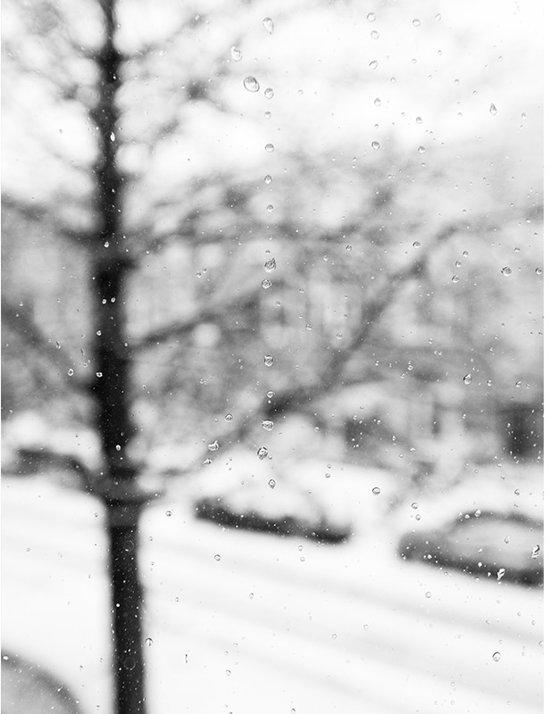 Winter Druppels Poster - 30x40cm – WALLLL