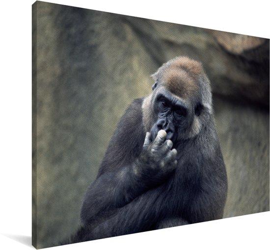 Schattige Gorilla krabt in zijn neus Canvas 180x120 cm - Foto print op Canvas schilderij (Wanddecoratie woonkamer / slaapkamer) / Wilde dieren Canvas Schilderijen XXL / Groot formaat!