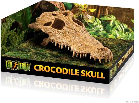 Exo Terra Terrarium decoratie Crocodile Skull - B - 23 x 12 x 7,5cm