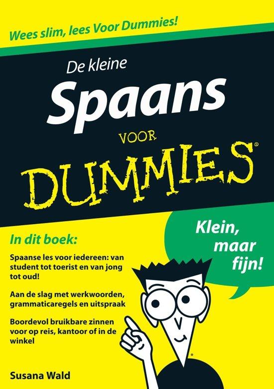 Bolcom De Kleine Spaans Voor Dummies Ebook Fontline