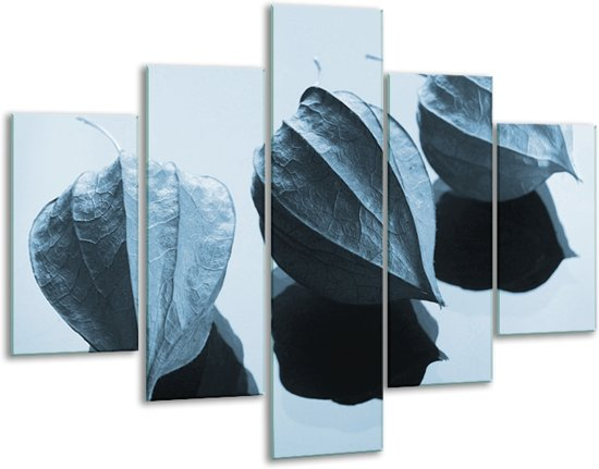Glas schilderij Bloem | Blauw, Wit | 100x70cm 5Luik | Foto print op Glas |  F006709
