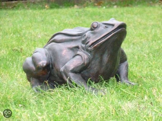 Tuinbeelden Brons Tuin : Bol.com gerichtekeuze tuinbeeld kikker brons look