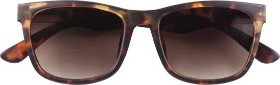 87c01b9be4f8e2 Zonnebril met leesbril met leesdeel