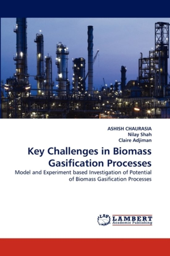 Key Challenges in Biomass Gasification Processes