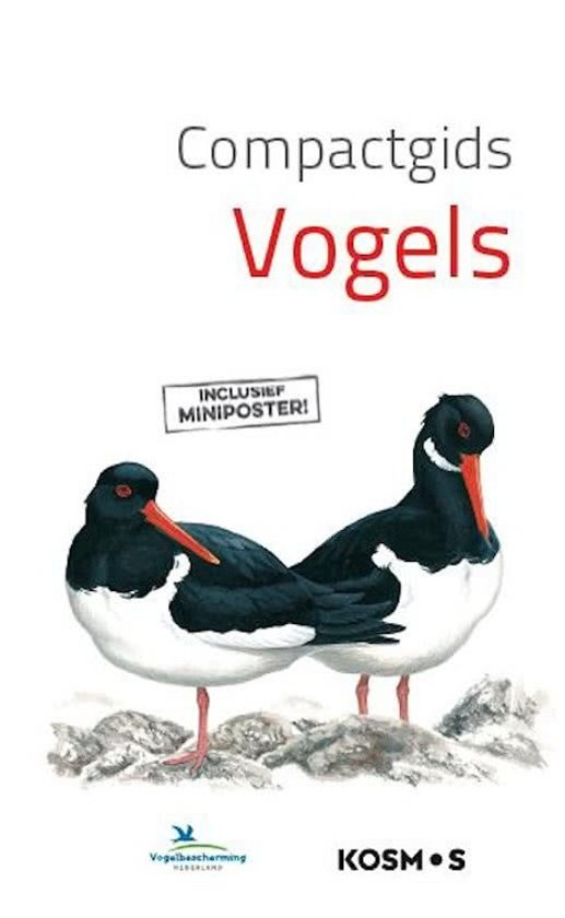 Afbeelding van Compactgids - Vogels