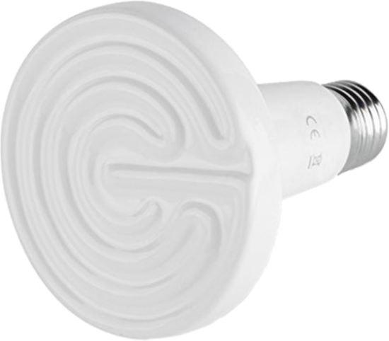 Keramisch warmte lamp infrarood Vermogen 60 watt (Wit)