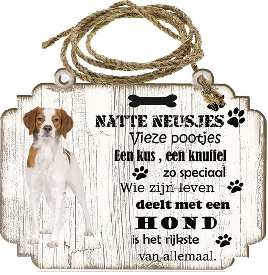Spreukenbordje hond: Epagneul Breton