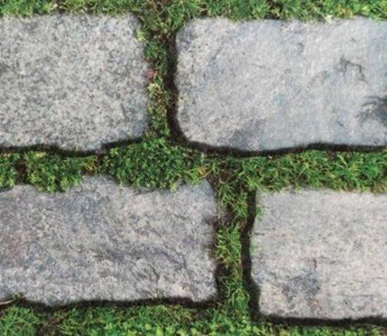 Expo Kassei stenen tegels met gras 15 x 2 (8.95 per m²)