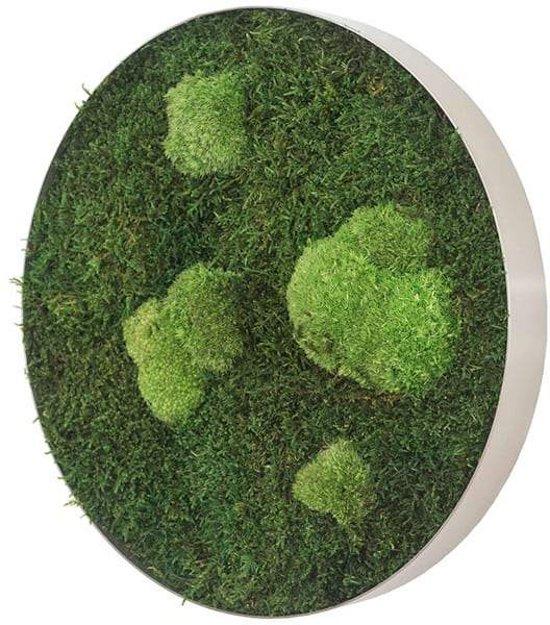 Ronde verticale tuin - Flat & Pole moss - Diameter 34cm