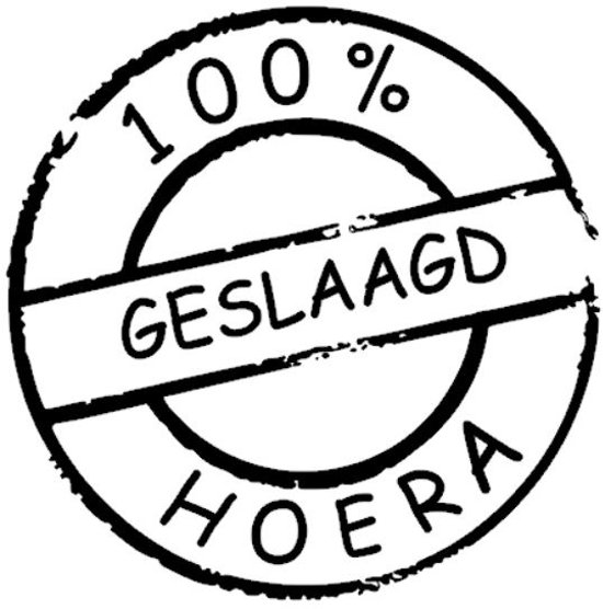 Bol Sticker Raam 100 Geslaagd Hoera Zwart Rosami