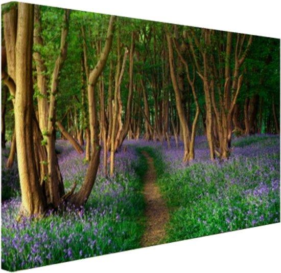 FotoCadeau.nl - Een bos met gekleurde bloemen Canvas 60x40 cm - Foto print op Canvas schilderij (Wanddecoratie)