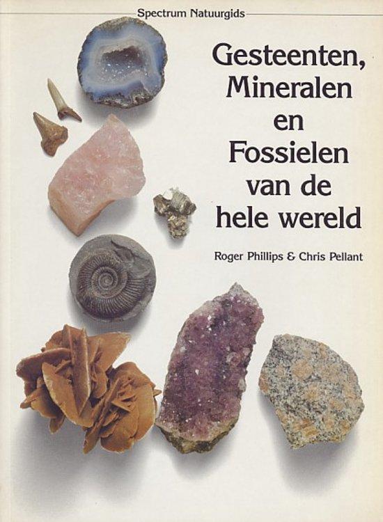 mineralen en fossielen