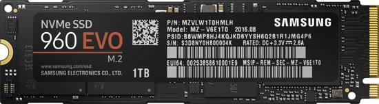 Samsung 960 EVO - Interne SSD - 1 TB