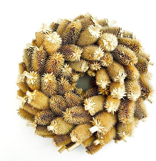 Krans Kerst Distel wit naturel 35cm Valentinaa