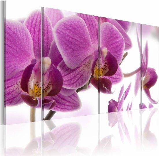 Schilderij - Geweldige Orchidee