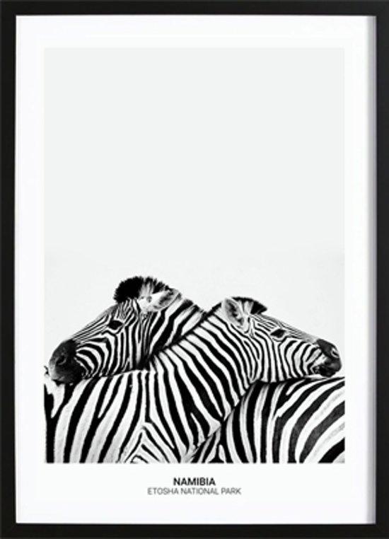 Zebra Hug Poster (29,7x42cm) - Natuur - Poster - Print - Wallified