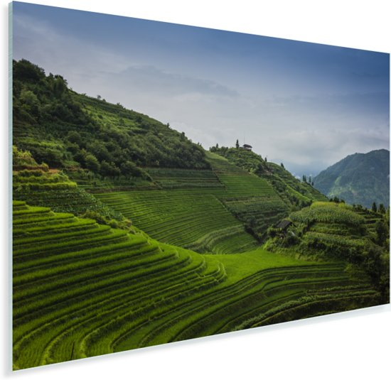 Groene rijstvelden in de Rijstterrassen van Lóngjĭ in China Plexiglas 120x80 cm - Foto print op Glas (Plexiglas wanddecoratie)