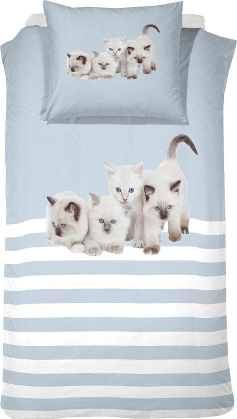 Cinderella Cute Kittens - Kinderdekbedovertrek - 140 x 200 cm - Eenpersoons - Blue