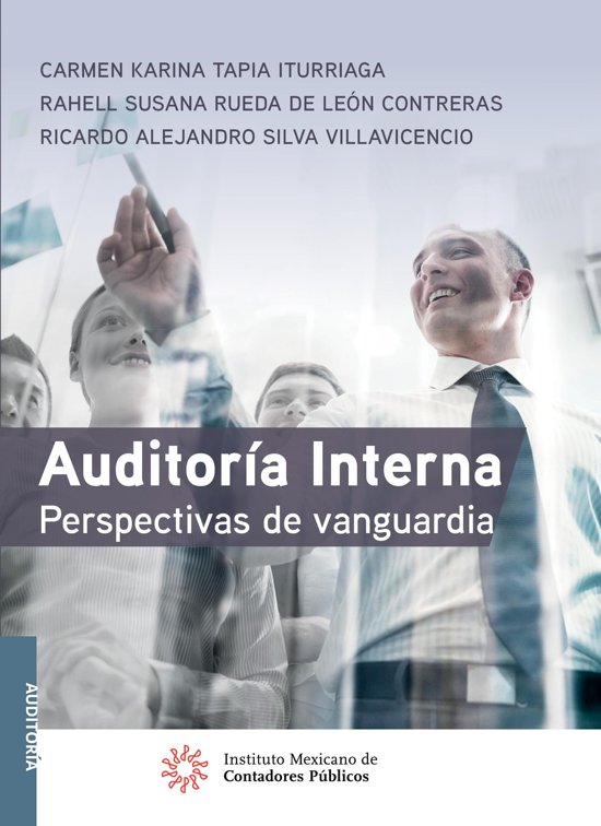Boek cover Auditoría Interna van Carmen Karina Tapia Iturriaga (Onbekend)
