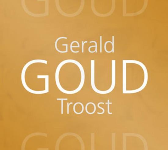 Goud - Gerald Troost pdf epub
