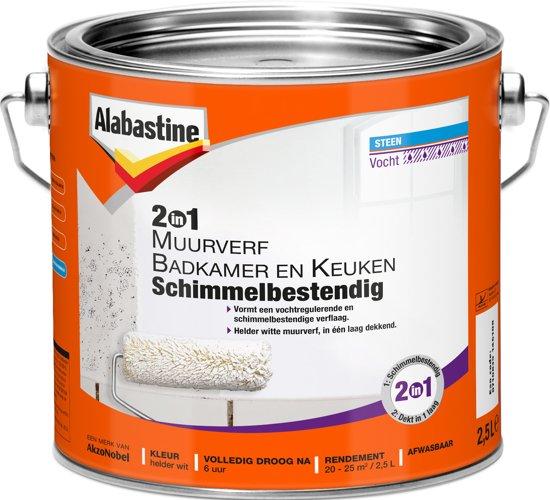bol.com | Alabastine 2-in-1 Muurverf Badkamer & Keuken, Wit - 2,5 ...