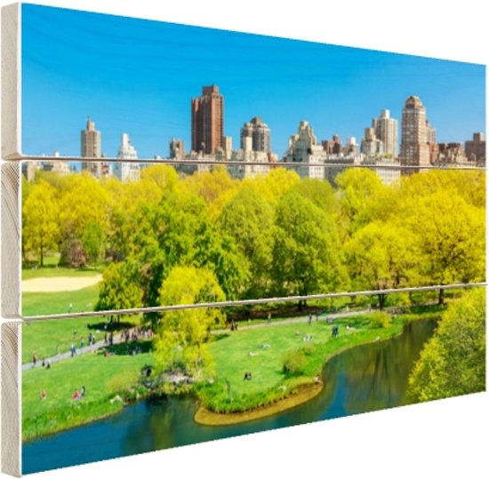 Groen Central Park in NY Hout 60x40 cm - Foto print op Hout (Wanddecoratie)