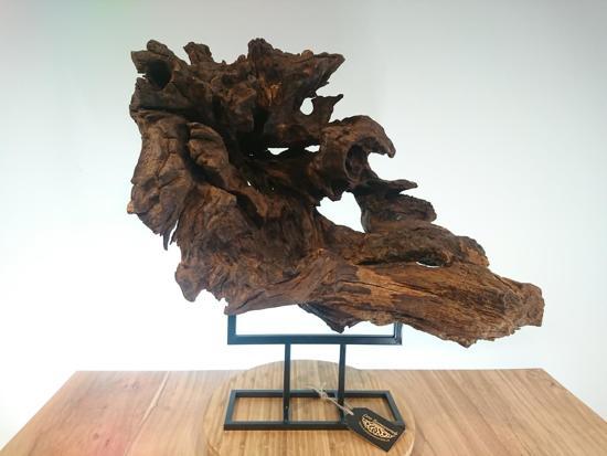 Kern van een eiken boomwortel op vlet, natuurlijk decoratief beeld of figuur