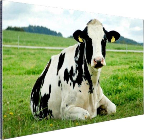 FotoCadeau.nl - Rustende Holsteinkoe Aluminium 30x20 cm - Foto print op Aluminium (metaal wanddecoratie)