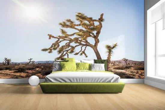 Woestijn met bomen Fotobehang 380x265