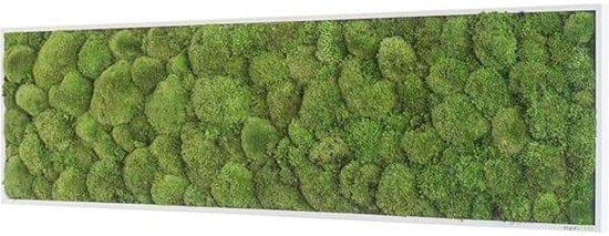 Verticale tuin - Pole moss - 140 x 40cm