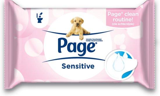 Page Vochtig Toiletpapier.Bol Com Page Sensitive Vochtig Wc Papier Maxipack 12 X 42 Stuks