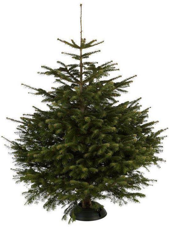 Bol Com Nordmann Echte Kerstboom Ca 150 Cm