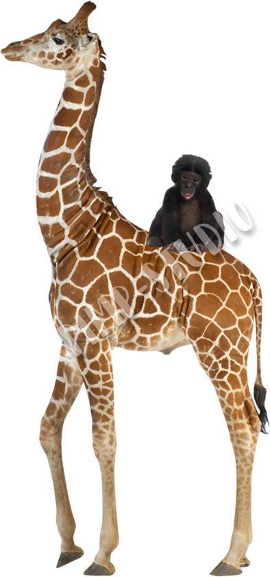 Giraf Strijkapplicatie