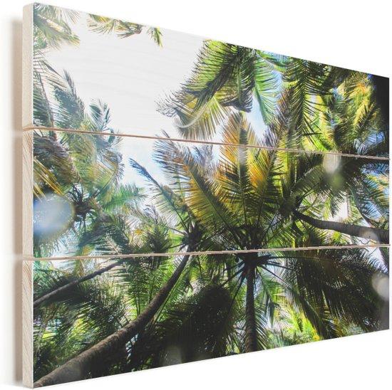 Palmbomen in het Glover's Reef van Belize Vurenhout met planken 120x80 cm - Foto print op Hout (Wanddecoratie)