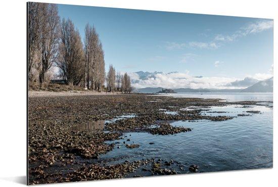 De kust van het Wanakameer in Nieuw Zeeland Aluminium 180x120 cm - Foto print op Aluminium (metaal wanddecoratie) XXL / Groot formaat!
