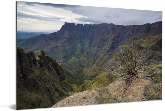 Uitzicht op de bergvallei bij het Amfitheater Drakensbergen in Zuid-Afrika Aluminium 180x120 cm - Foto print op Aluminium (metaal wanddecoratie) XXL / Groot formaat!