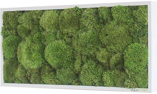 Verticale tuin - Pole moss - 57 x 27 cm