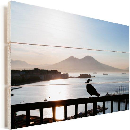 Postduif op een hek bij zonsondergang in Napels Vurenhout met planken 60x40 cm - Foto print op Hout (Wanddecoratie)