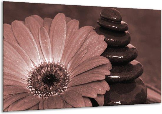 Schilderij | Canvas Schilderij Bloem, Stenen | Rood, Bruin | 120x70cm 1Luik | Foto print op Canvas