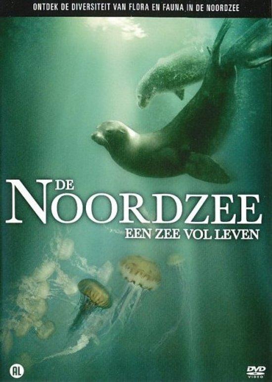 Noordzee, De: Een Zee Vol Leven