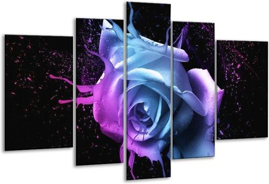 Glasschilderij Roos   Paars, Blauw, Zwart   170x100cm 5Luik   Foto print op Glas    F003560