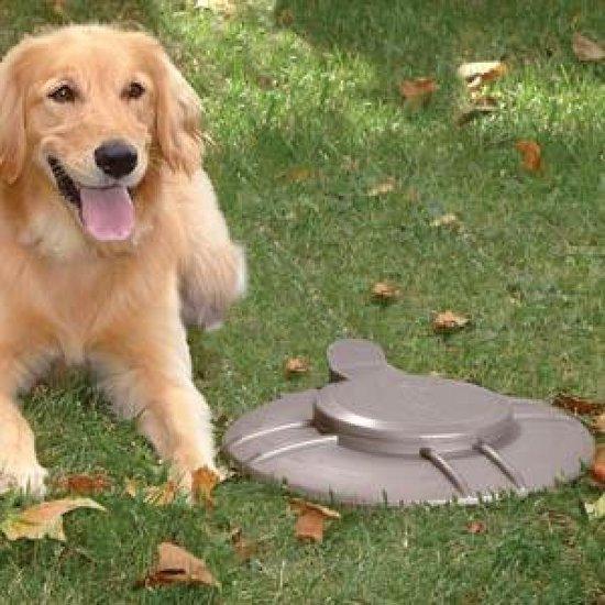 Doggie Dooley hondentoilet metaal 2-4 honden