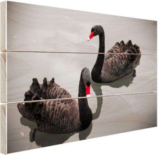Zwarte zwanen Hout 120x80 cm - Foto print op Hout (Wanddecoratie)