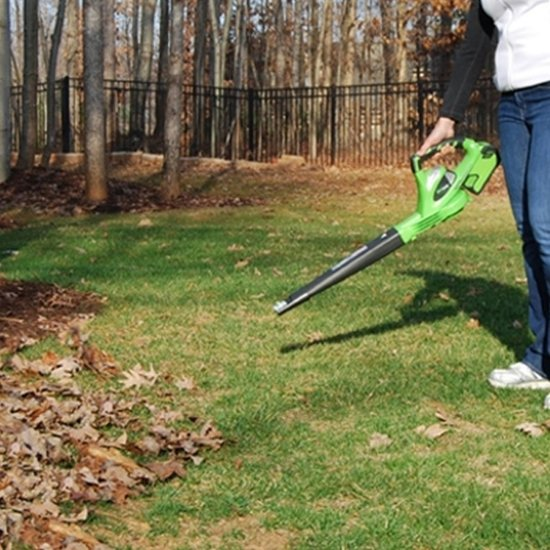 Greenworks Bladblazer 24107