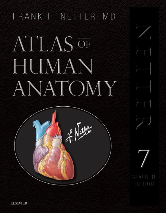 Bol Atlas Of Human Anatomy Professional Edition Netter