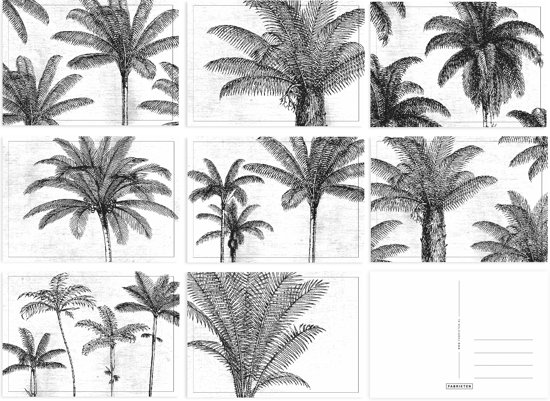 bol.com | Kaartenset Palm - 8 stuks - A6 - Ansichtkaarten ...