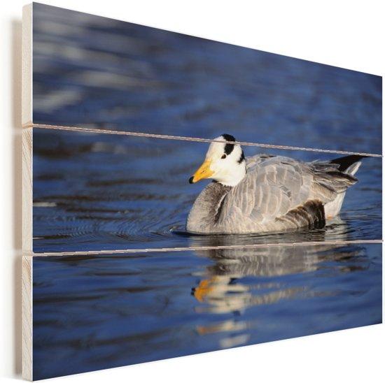 Indische gans zwemt in rustig water Vurenhout met planken 120x80 cm - Foto print op Hout (Wanddecoratie)