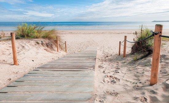 Fotobehang Strand, Zee   Blauw   416x254