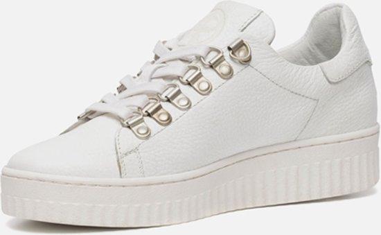 Ann Wit Rocks Rocks Ann Ann Wit Sneakers Rocks Sneakers Sneakers raAgRqTr