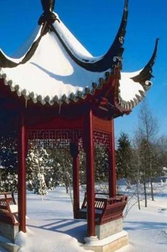 2019 Daily Planner Winter Theme Snow Covered Pagoda 384 Pages